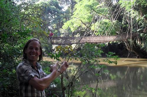 Vine Bridge Guinea West Africa