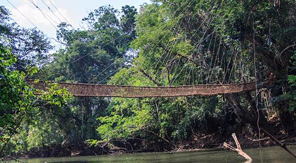 Vine-Bridge-Guinea-West-Africa-Tour-Group-Travel